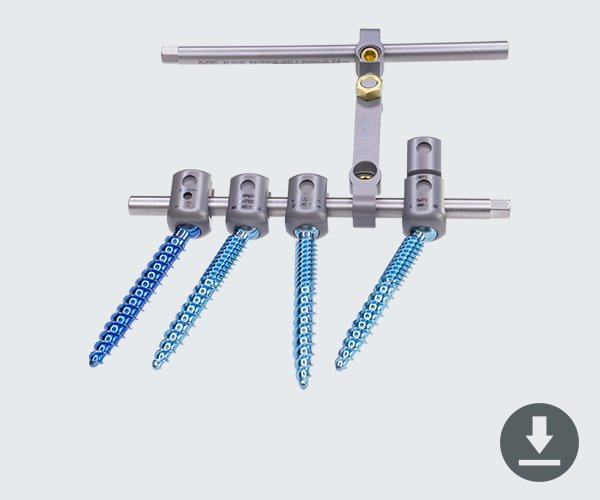 pedicle screws on rod